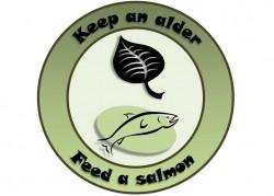 Alder_salmon.jpg(w x h, 0 KB)
