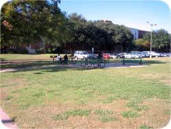 FAC - Bear Park 3