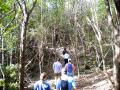 Hike Cameron Park 1