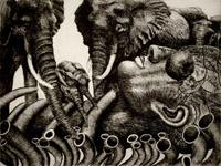 News Elephant 4