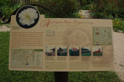 Antique Rose Emporium Sign
