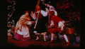 9596 Into the Woods (1)
