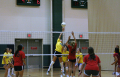2010 Volleyball 319