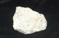1 piece of limestone