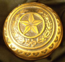 Bronze TX seal paperweight