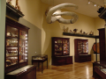 Cabinets of Curiosities (hi-res)