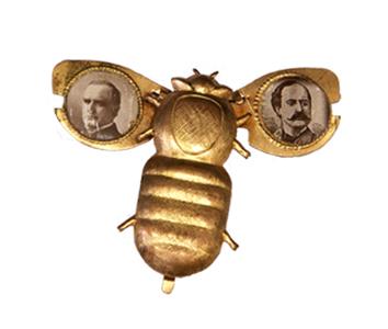 McKinley Bug
