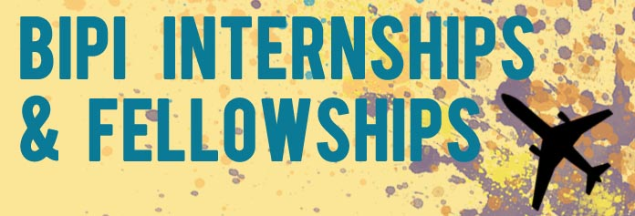 BIPI Internships Button