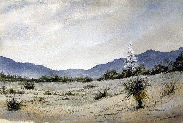 Gene Hartsell, White Sands, New Mexico.