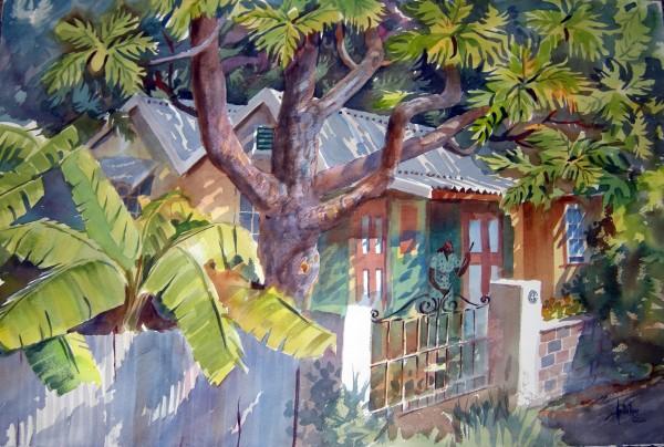 Herb Rose, Banana Tree, 1972.