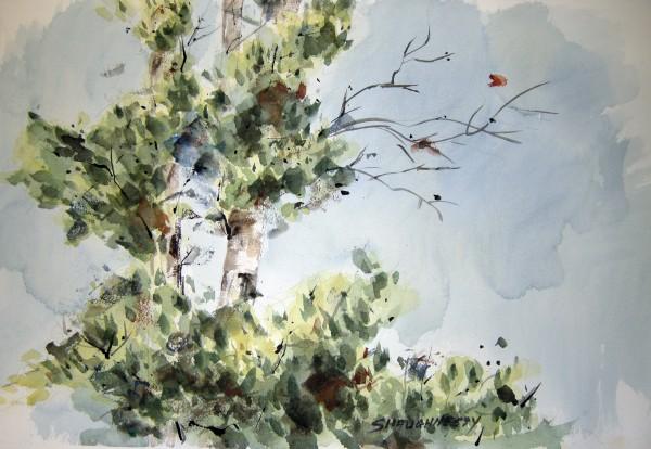 Marie Shaughnessy, Greening of Alaska, series 3.