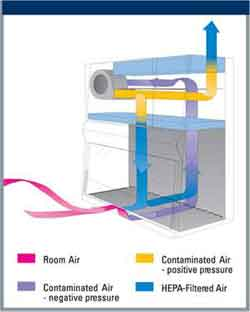 Biosafety Cabinet Air Flow