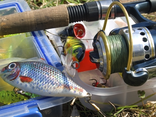 Stocking florida bass in texas reservoirs may alter stream for Fish stocking texas