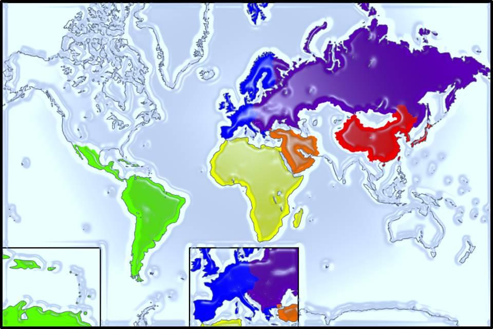 Area Studies globe