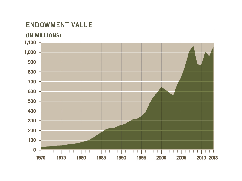 Endowment Value 2013
