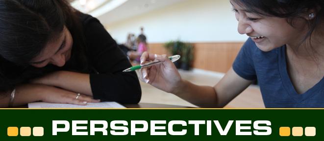 perspectivesheadermentoring