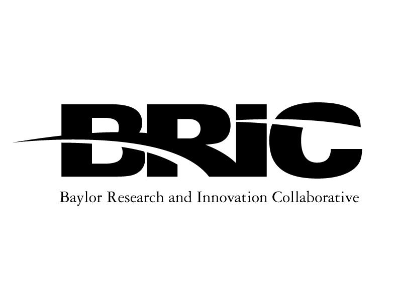 BRIC logo black