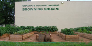 Photo of garden outside of Browning Square