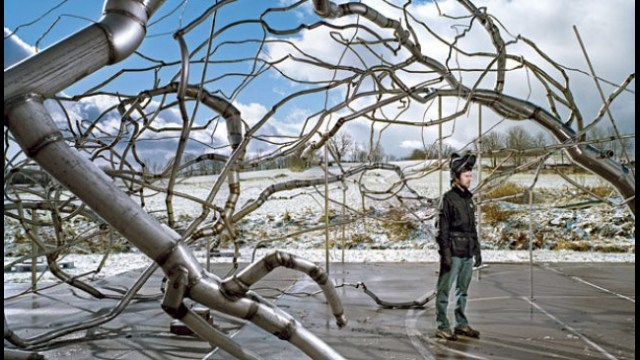 Roxy Paine photo