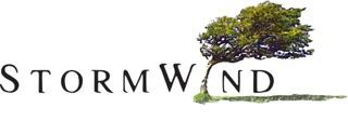 Logo - StormWind