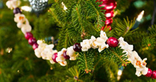 popcorn and berries garland