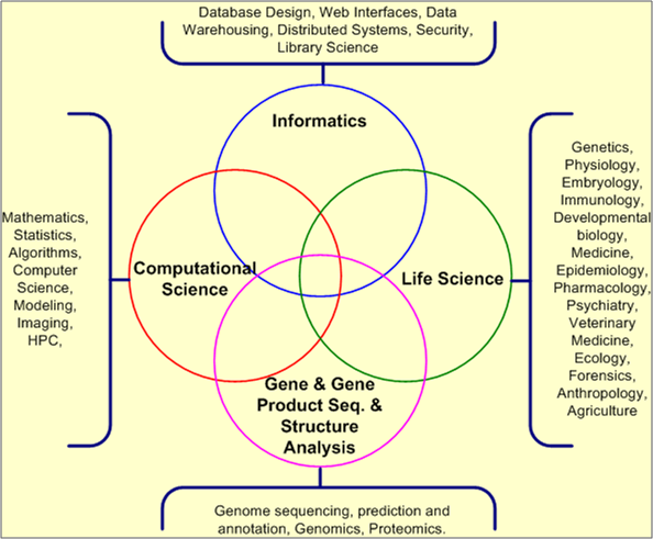 Bioinformatics Program Diagram