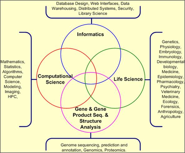 Bioinformatics Program Diagram