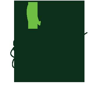 hand-sicem