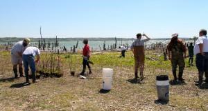 BU planting lake waco 1