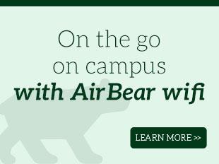 AirBear