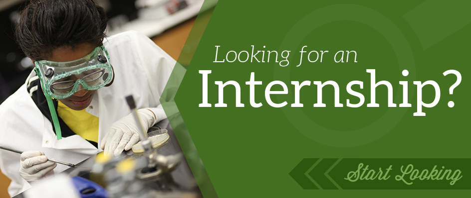 Student<br> Internships