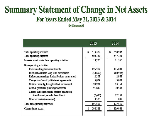 Summary Statement of Change in Net Assets