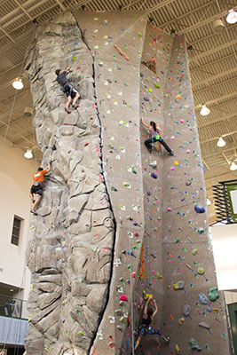 Bear Climb 2014