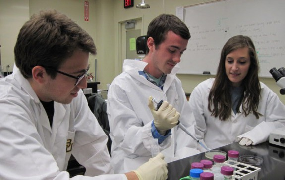 Students analyze samples in a lab