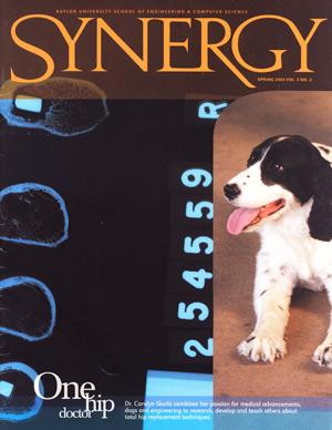 Synergy 2004
