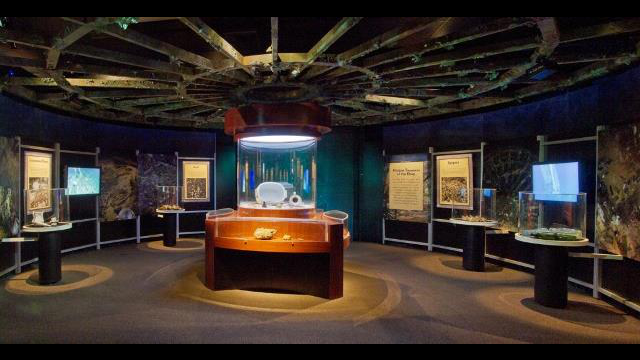 shipwrecked wheel room