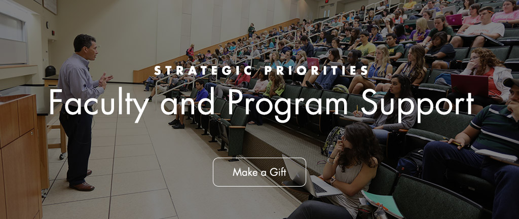 mc_strategic-priorities_faculty-support