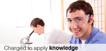 Intern apply knowledge
