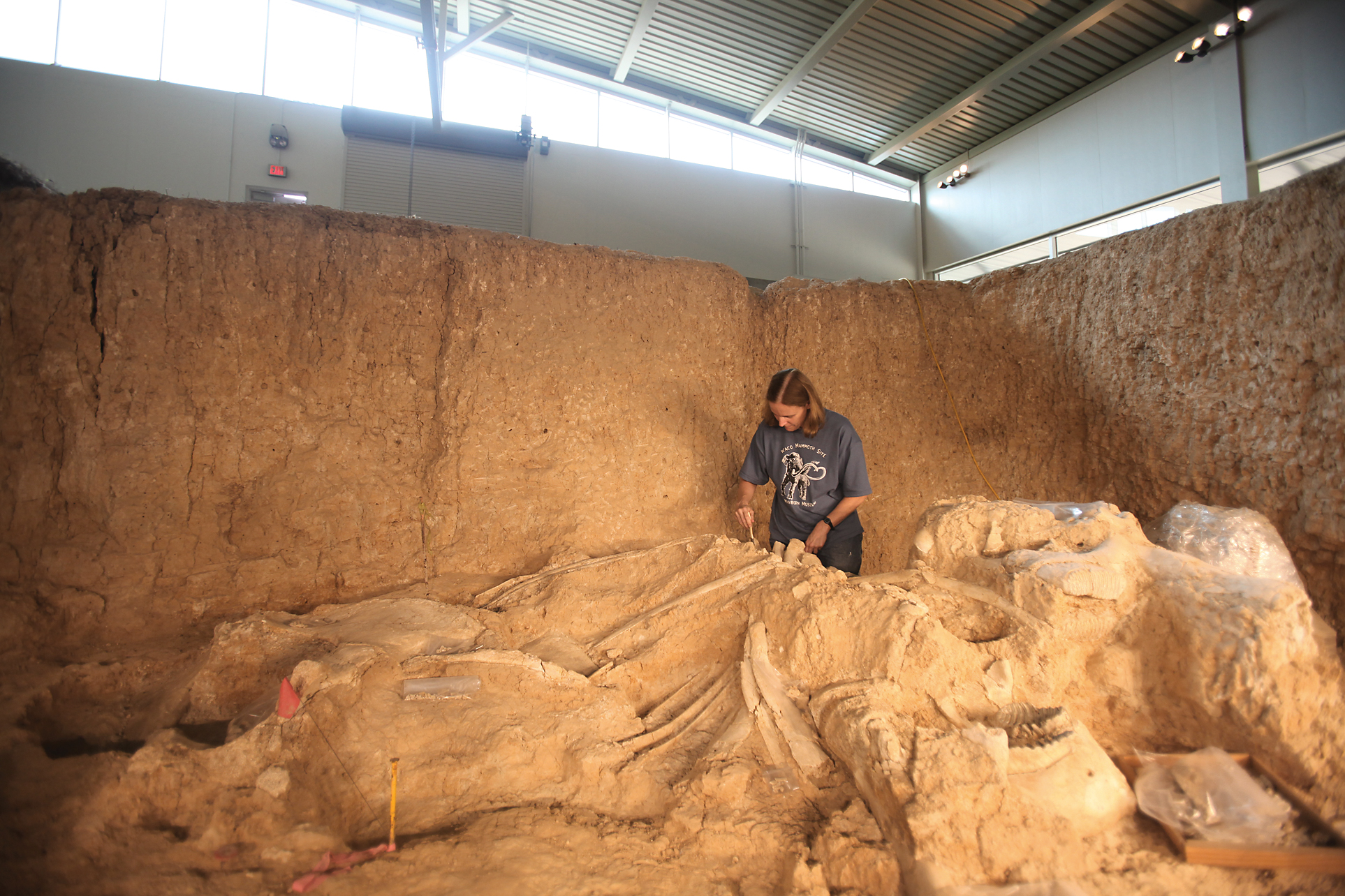 Mammoth Excavation