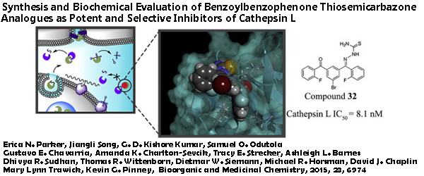 Research - Synthesis and Biochemical Evaluation of Benzoylbenzophenone