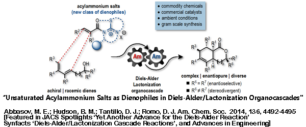 Research -  Unsaturated Acylammonium Salts as Dienophiles
