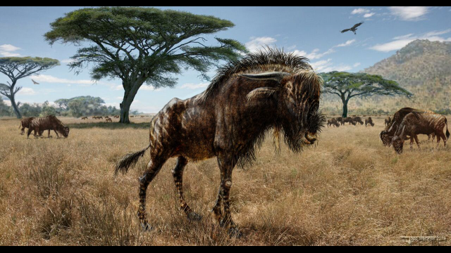 Baylor Researcher Uncovers Ancient Wildebeest-Like Animal's 'Strange Adaptation' Similar to Dinosaur