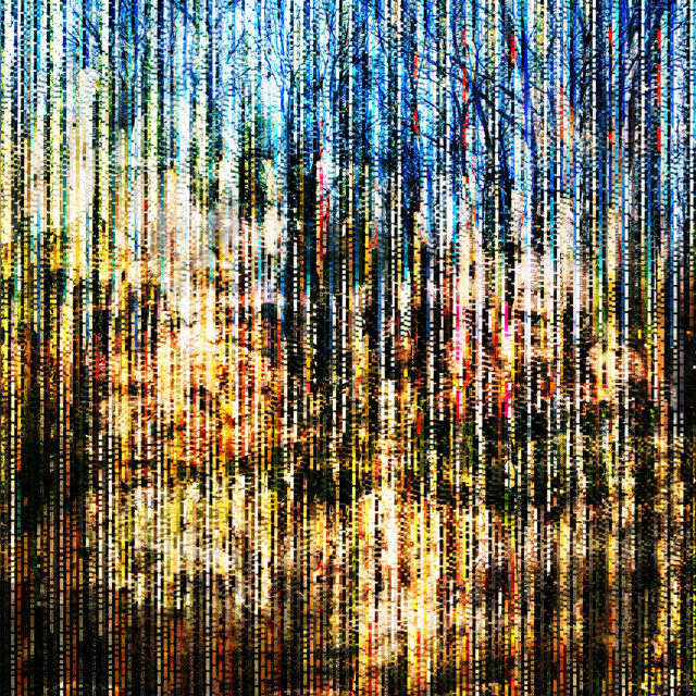 The Collective Glitch_Home | archival pigment print on aluminum, 40 x 40, 2016