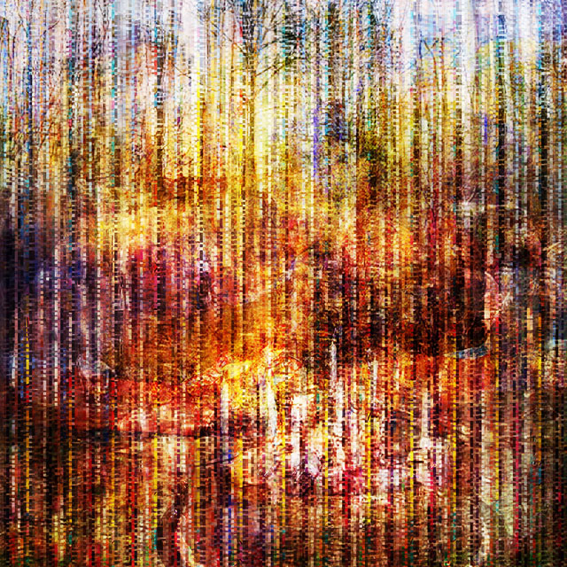 The Collective Glitch_Birthday | archival pigment print on aluminum, 40 x 40, 2015