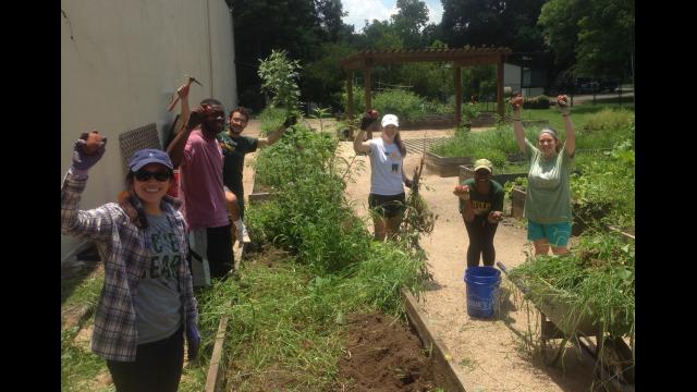 Campus Kitchen Baylor Community Garden