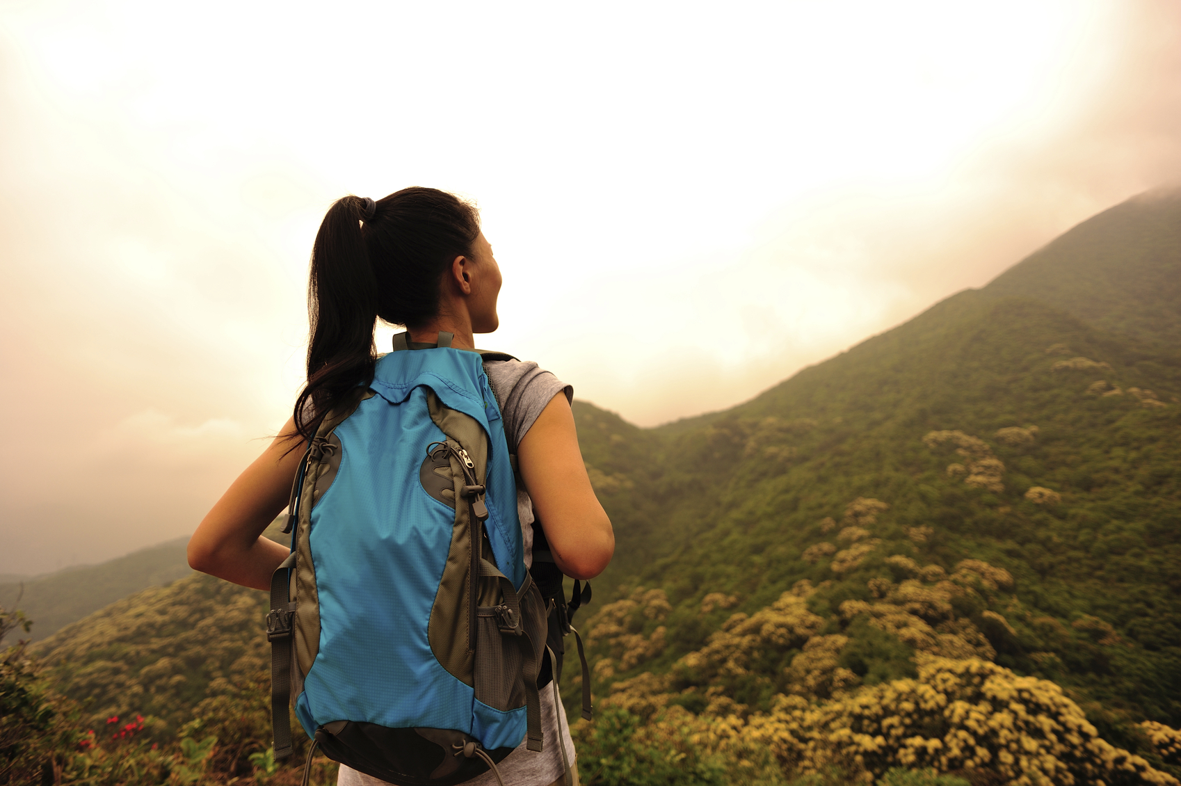 Stock photo of 