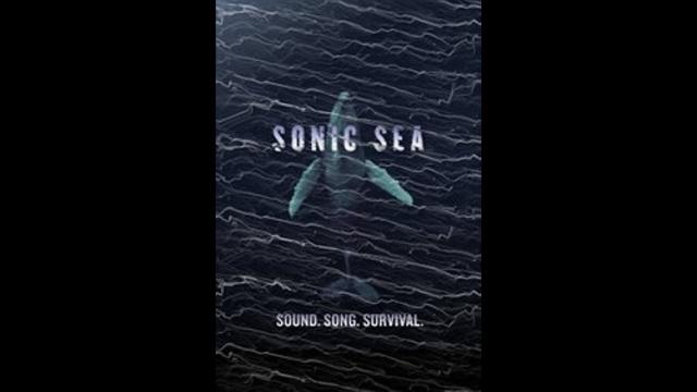 Sonic Sea