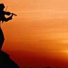 [fiddler]