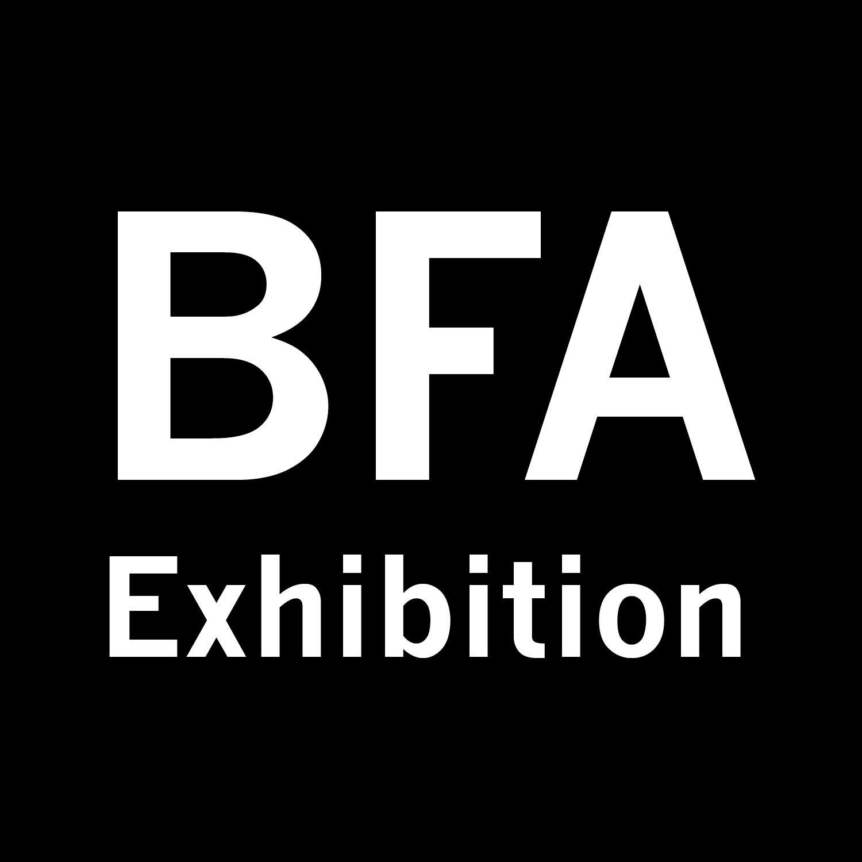 BFA Senior Exhibition <br>Spring 2017