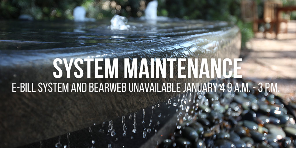 Systems Maintenance